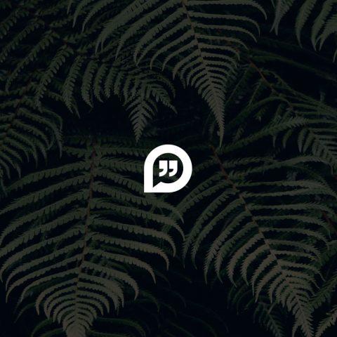 portfolio-thumbnail-6